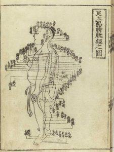 تاریخچه طب سوزنی چین