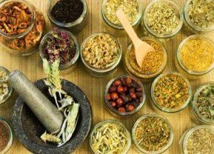طب گیاهی چینی