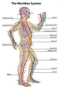سیستم مریدین های بدن و تئوری طب سوزنی