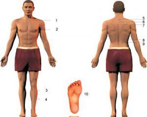 نقاط طب سوزنی ، مریدین برای درمان آسم روی کمر