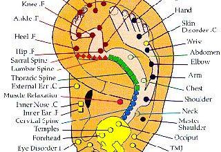 Photo of نقاط طب سوزنی گوش در چه بخش هایی قرار دارند و این روش چطور انجام می گیرد؟
