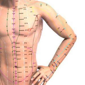 نقاط طب سوزنی مریدین بدن شکم