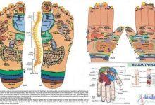 سوجوک تراپی یا طب سوزنی کره ای برای درمان درد و بیماری از طریق کف دست و پا-طب سوجوک درمانی