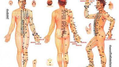 Photo of چاق شدن پایین تنه و پاها با روش های مختلف ورزشی و پزشکی
