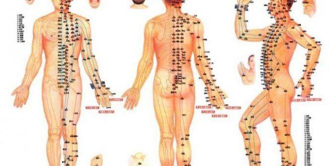 بدنسازی و تقویت عضلات، بزرگ کردن باسن با طب سوزنی و گیاه ماکا